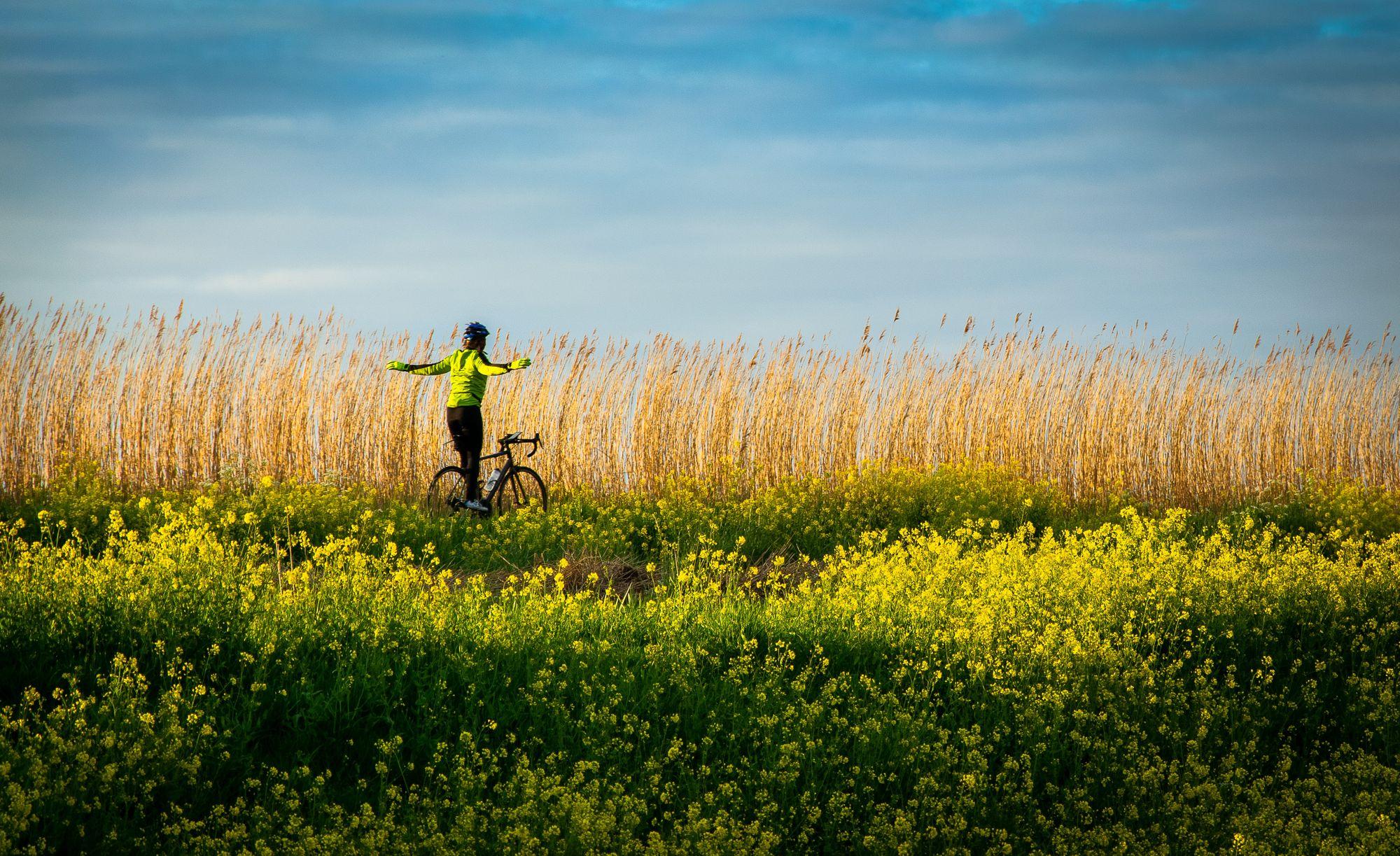 Staycation: op fietsvakantie in Nederland